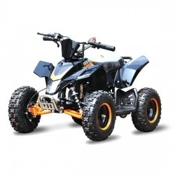 Mini Quad/ATV 49cc QUAD RACER
